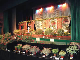 Photo of the 2001 Annual Show