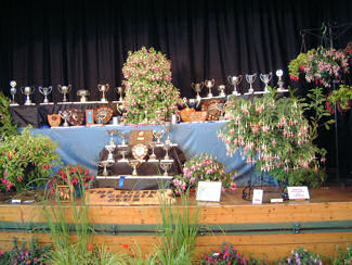 Photo of the 2008 Annual Show